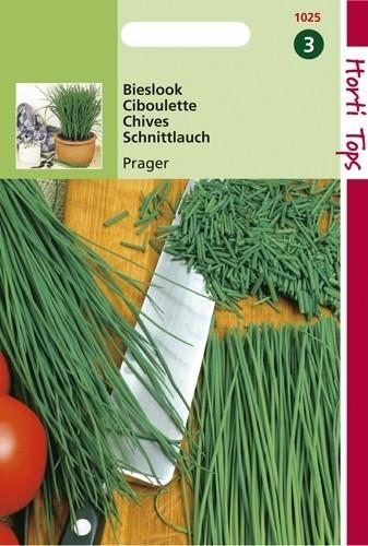Bieslook fijne (zaad Allium Prager).jpg